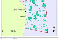 Hamon Grab Samples: Biomass distribution map