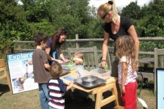 Essex Wildlife Trust Marine Week