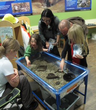 Birmingham Sea Life Centre
