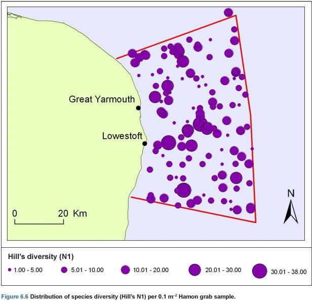 Hamon Grab samples; Diversity of species distribution map