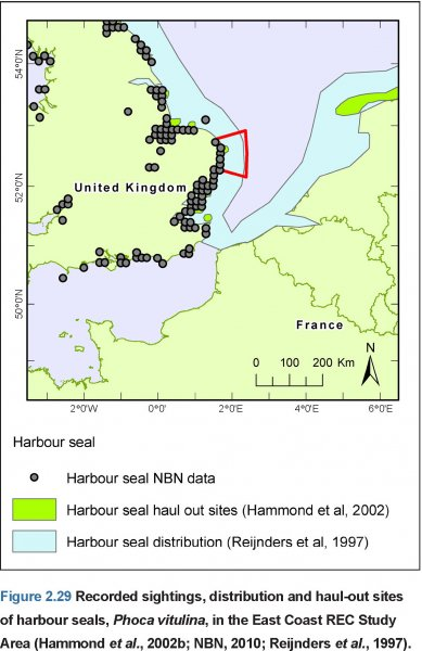 Recorded Harbour Seal sightings