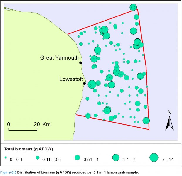 Hamon Grab Samples: Biomass distribution map