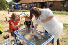 Essex Wildlife Trust Marine Week