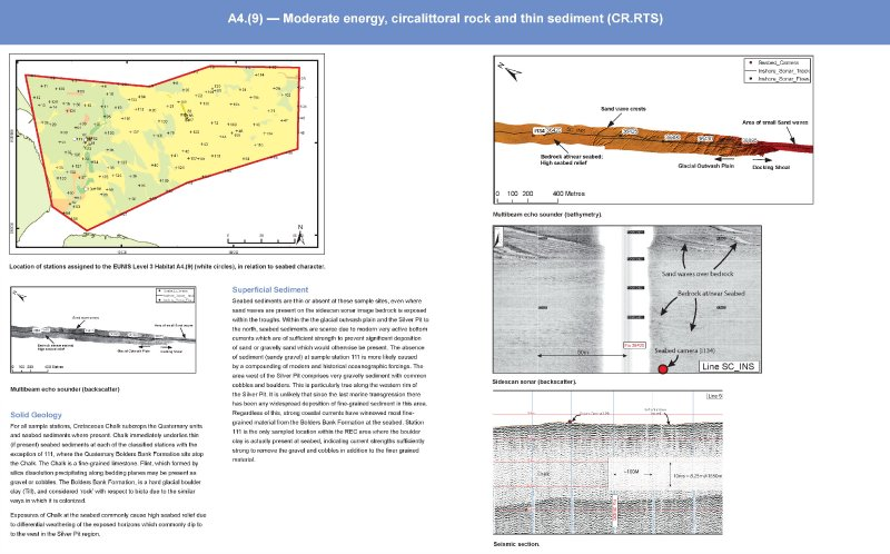 Humber Biotope A4.(9) Moderate energy circaliitoral rock and thin sediment (CR.RTS)