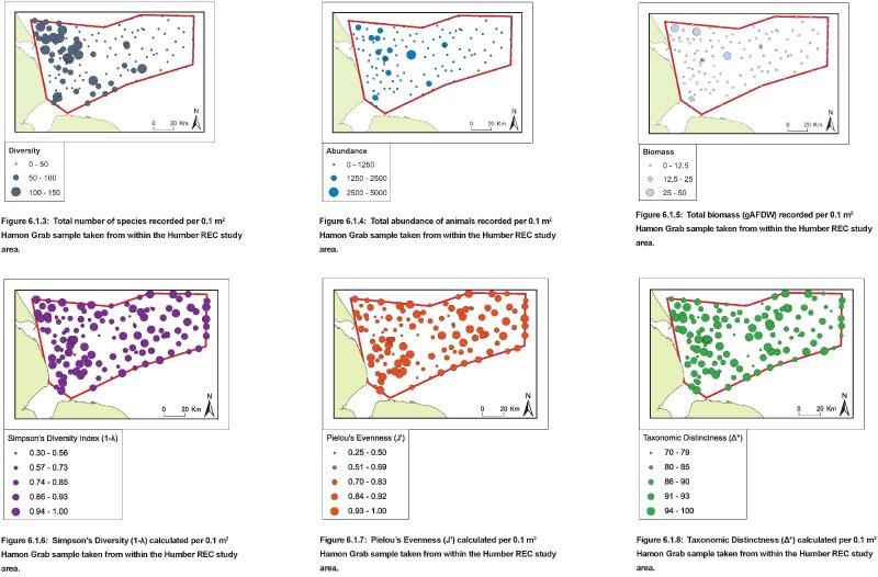 Hamon Grab samples: Quantitative distribution maps