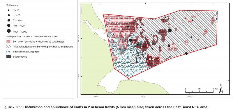Crabs abundance and distribution map