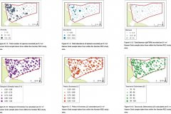 Hamon Grab samples: Quantitative distribution maps