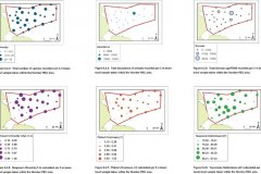 Beam Trawl samples: Quantitative maps