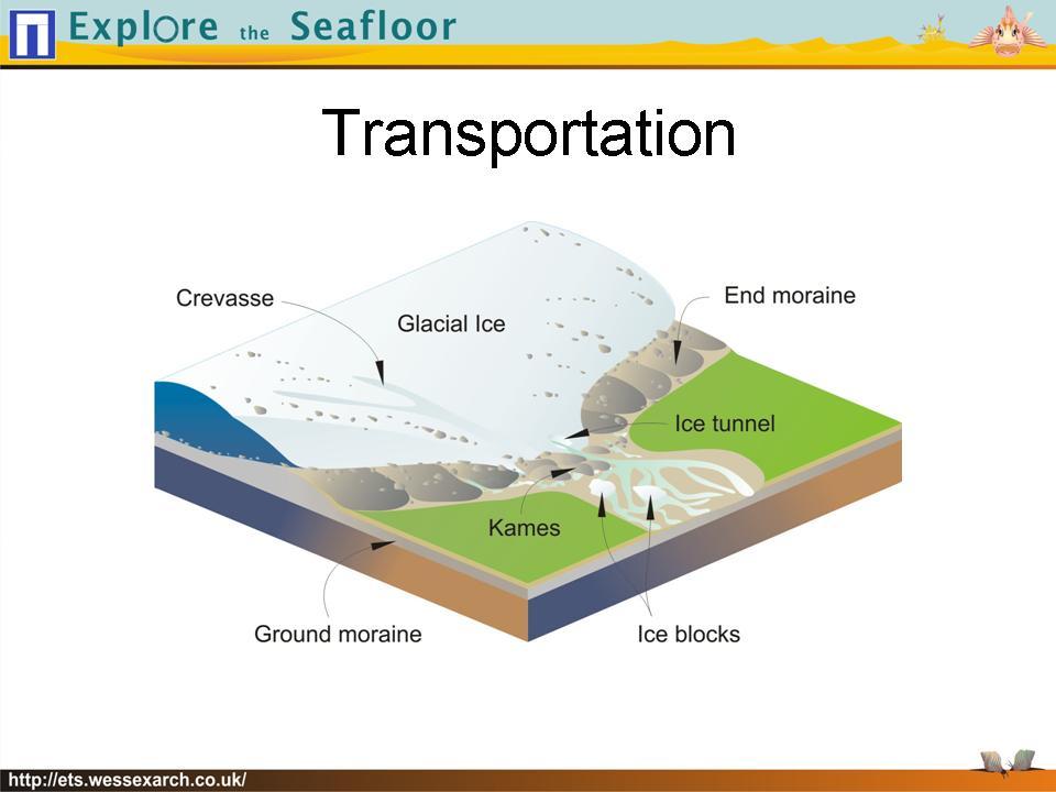 Powerpoint Presentation: slide17