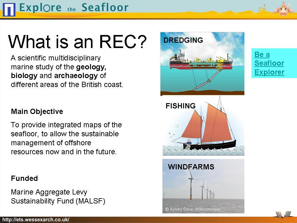 Powerpoint Presentation: slide3