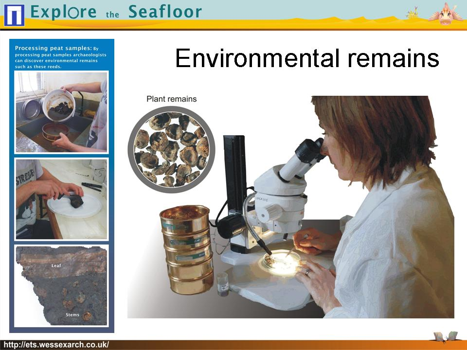 Powerpoint Presentation: slide30
