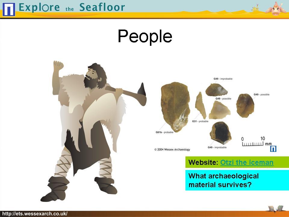 Powerpoint Presentation:slide41