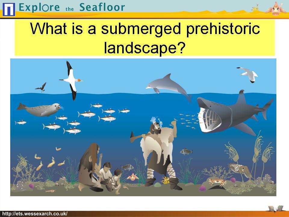 Powerpoint Presentation: slide6