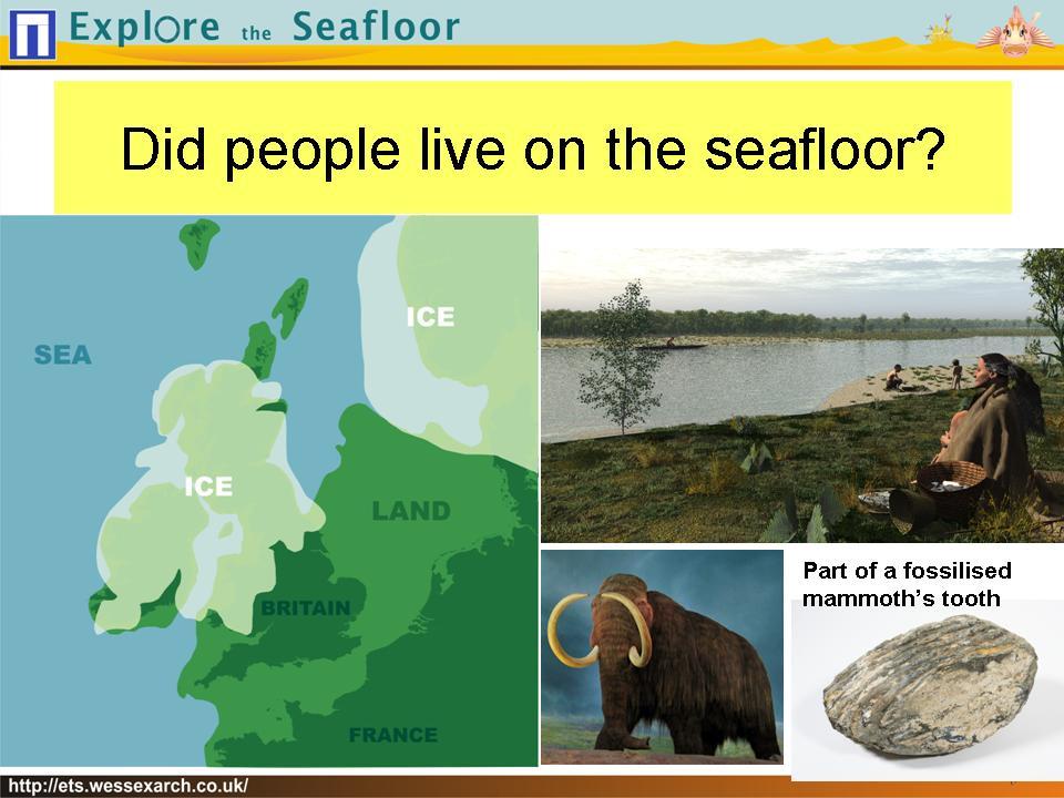 Powerpoint Presentation: slide7