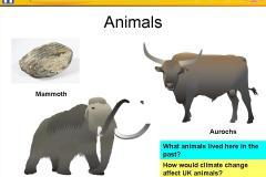 Powerpoint Presentation: slide40