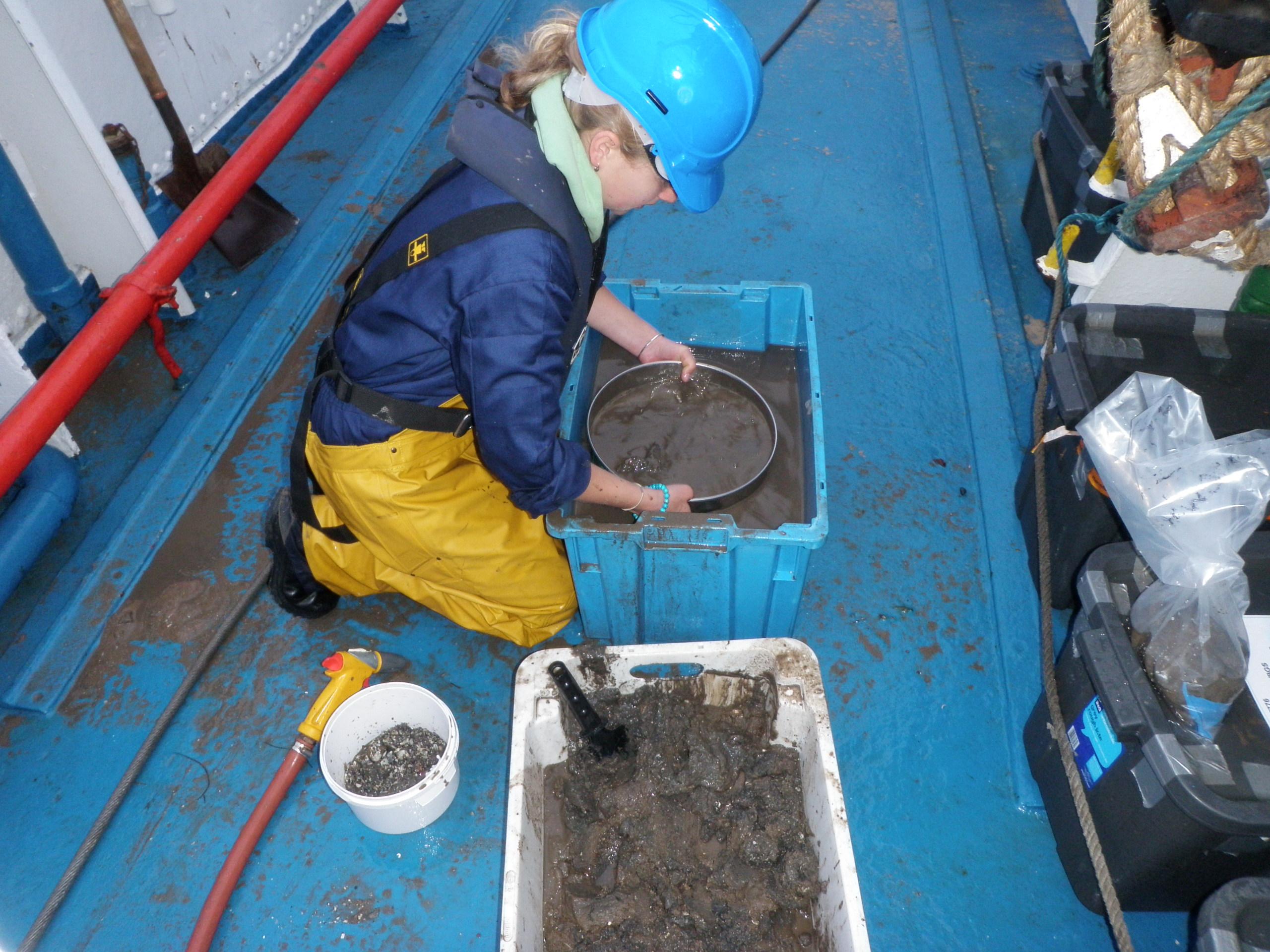 On the boat: sorting Hamon Grab samples