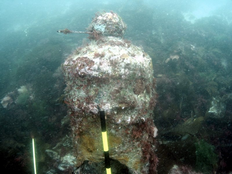 Cannon from HMS Colossus