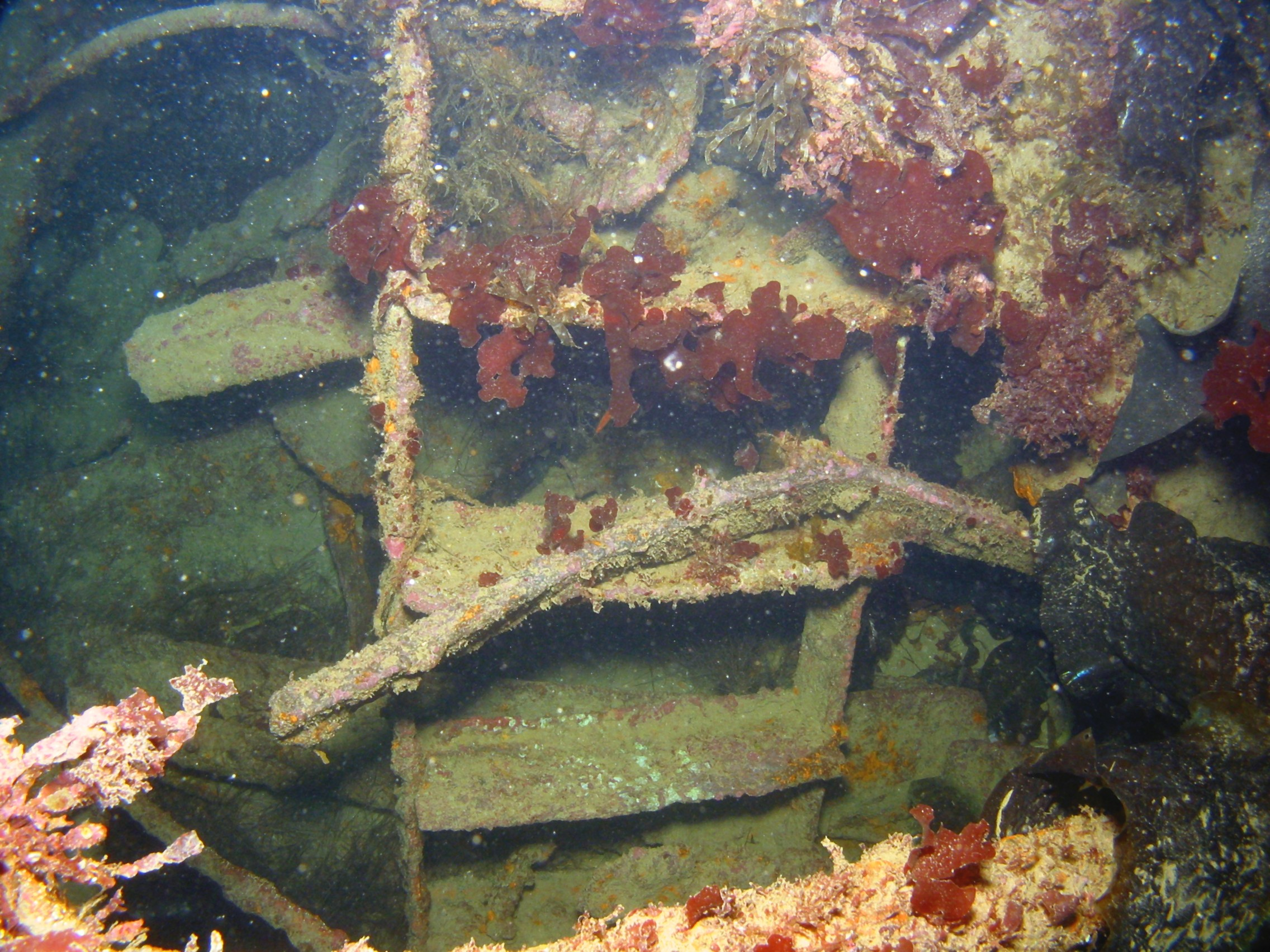 Remains of a ladder into the HMS Drake