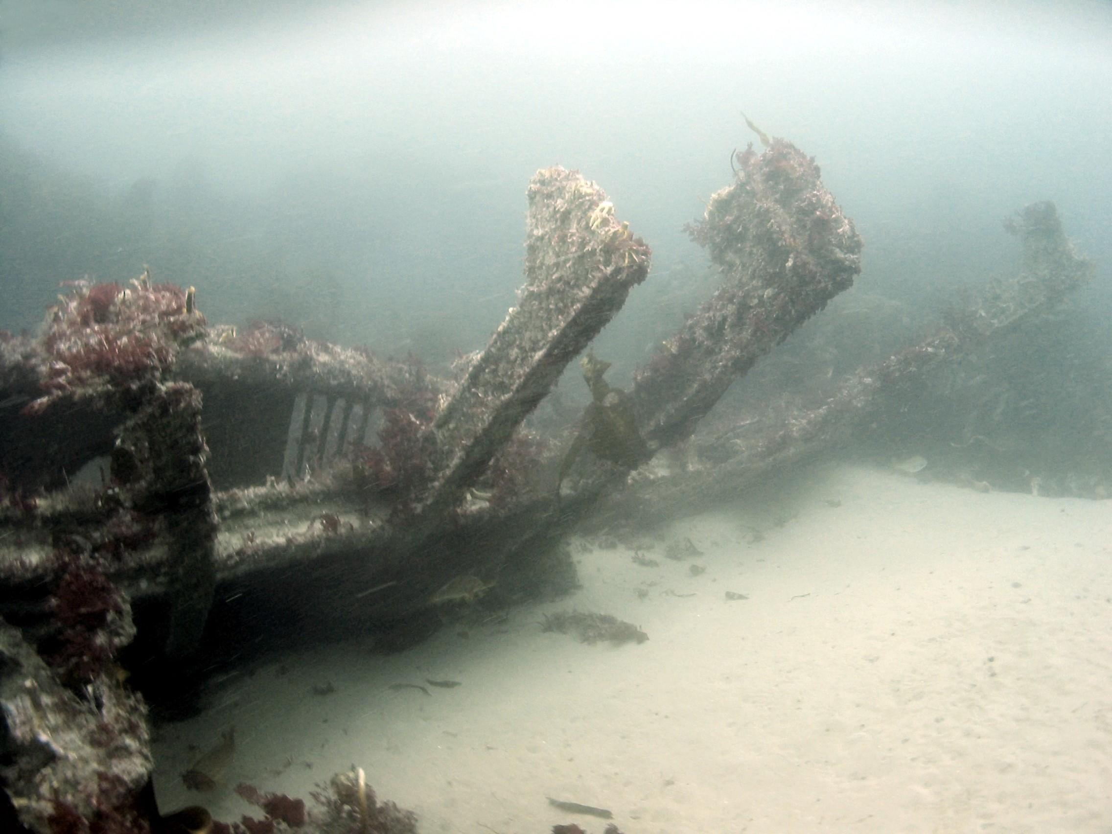 Stern frames of the HMS Drake