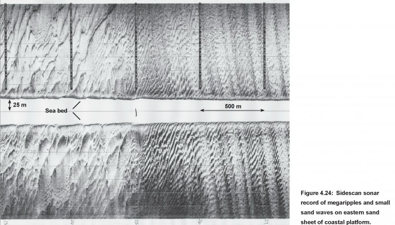 Sidescan data image showing sandwaves and megaripples
