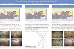 A4.1 Atlantic and Mediterranean high energy circalittoral rock, EUNIS level 3 habitat biotope