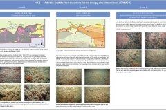 A4.2 Atlantic and Mediterranean moderate energy circalittoral rock, EUNIS level 3 habitat biotope