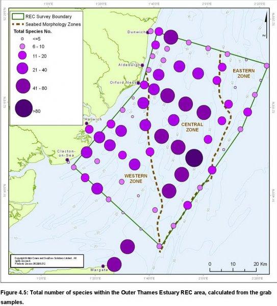 REC Total numbers of species quantification map